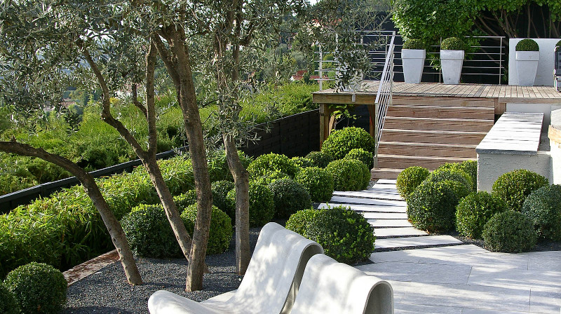 realizzazione giardini: un giardino mediterraneo