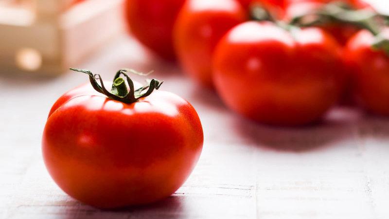 Pomodoro, il re dell'estate